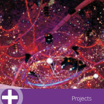 British Council - Projects
